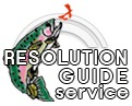 Resolution Guide Service