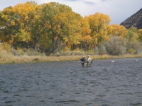 What Role the Length of a Fly Rod Really Plays in the Fly Cast